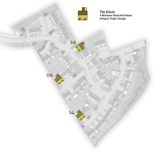 Edwin Site Plan